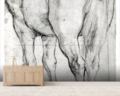 Horses Rear (pencil on paper) (b/w photo) wall mural living room preview