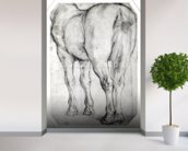 Horses Rear (pencil on paper) (b/w photo) wall mural in-room view