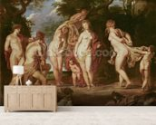 Judgement of Paris, c.1605 (oil on canvas) wall mural living room preview