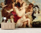 Rape of the Daughters of Leucippus (oil on canvas) wall mural living room preview