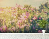 Cosmos Flowers and Sunlight Vintage Tones wall mural in-room view