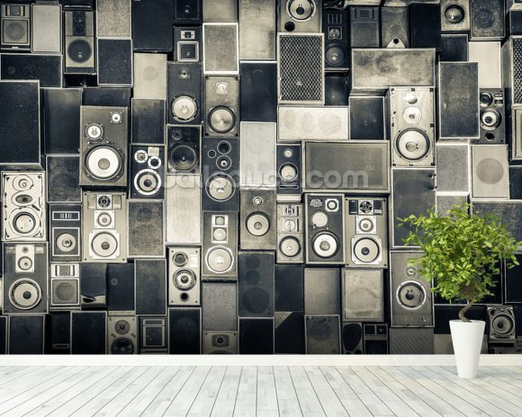 Music Speakers Wall Monochrome wall mural room setting