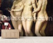 The Medici Cycle: Education of Marie de Medici, detail of the Three Graces, 1621-25 (oil on canvas) wallpaper mural living room preview