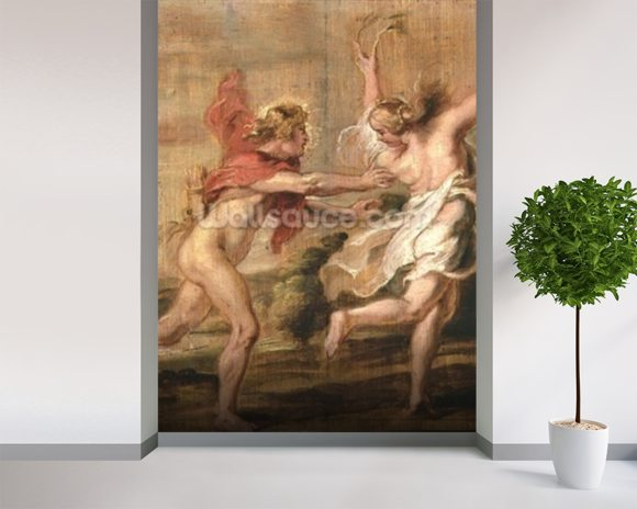 Apollo and Daphne, c.1636 (oil on panel) wall mural room setting
