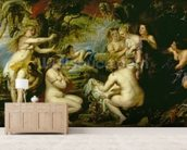 Diana and Callisto, c.1638-40 (oil on canvas) wallpaper mural living room preview