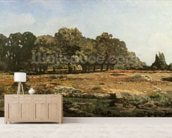 Avenue of Chestnut Trees at La Celle-Saint-Cloud, c.1866-67 (oil on canvas) wallpaper mural living room preview