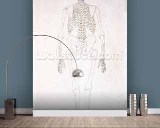 George stubbs wall murals stubbs wallpaper wallsauce for Figure 8 mural