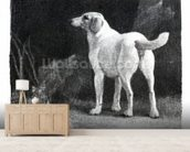 Dog, 1788 (engraving) mural wallpaper living room preview