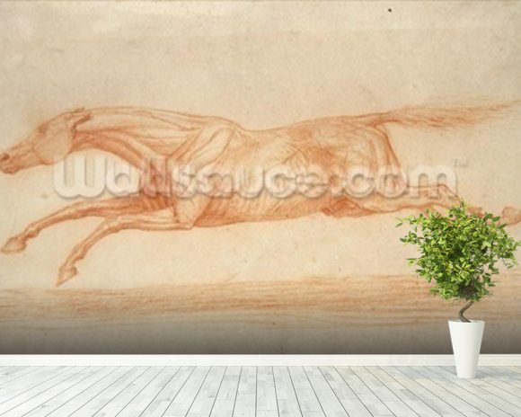 Study of a Racehorse in Action: galloping to the left (red chalk on buff paper) wall mural room setting