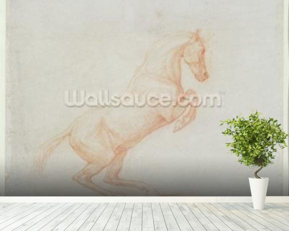 A Prancing Horse, facing right, 1790 (red chalk on paper) wallpaper mural room setting