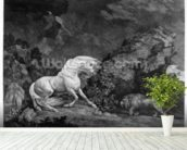 A Horse Affrighted by a Lion, engraved by the artist, 1777 (etching) wallpaper mural in-room view