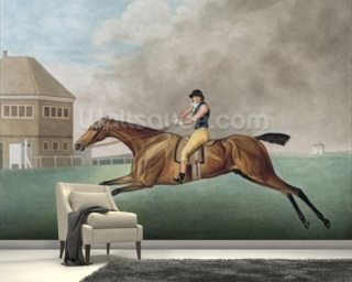 Baronet, 1794 Wallpaper Mural Wall Murals Wallpaper