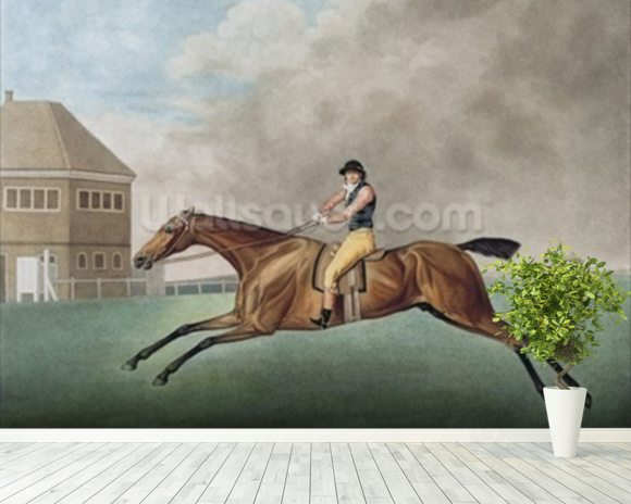 Baronet, 1794 (etching) wall mural room setting