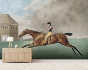 Baronet, 1794 (etching) wall mural living room preview