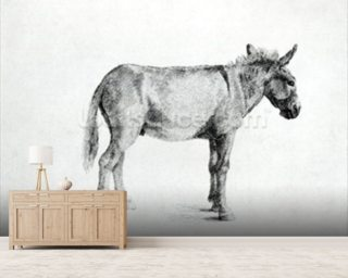 Donkey 1766 (pen and ink on paper) (b/w photo) mural wallpaper