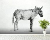 Donkey 1766 (pen and ink on paper) (b/w photo) mural wallpaper in-room view