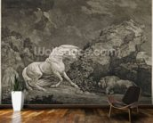 A Horse Affrighted by a Lion, engraved by the artist (etching) mural wallpaper kitchen preview