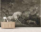 A Horse Affrighted by a Lion, engraved by the artist (etching) mural wallpaper living room preview