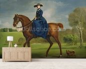 The Countess of Coningsby in the Costume of the Charlton Hunt, c.1760 (oil on canvas) wall mural living room preview