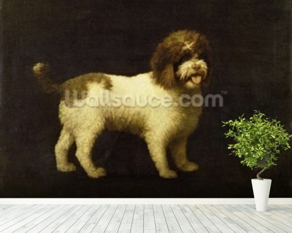 A Water Spaniel, 1769 (oil on canvas) wallpaper mural room setting
