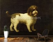 A Water Spaniel, 1769 (oil on canvas) wallpaper mural kitchen preview