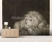 A Lion (A Recumbent Lion) engraved by the artist, pub. 1788 (etching) mural wallpaper living room preview