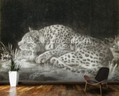 A Tyger (A Sleeping Cheetah) (mezzotint) wallpaper mural kitchen preview
