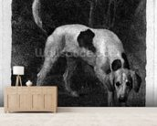 Dog (A Foxhound on the Scent) engraved by the artist, pub. 1788 (etching) mural wallpaper living room preview