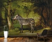 A Zebra, 1763 (oil on canvas) wall mural kitchen preview