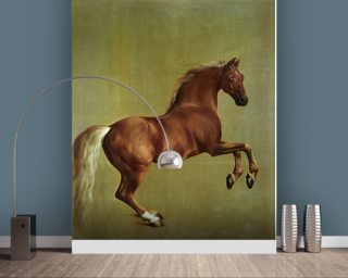 Whistlejacket Wallpaper Mural Wall Murals Wallpaper
