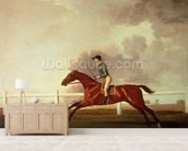 Bay Malton with John Singleton Up, c.1767 (oil on canvas) wall mural living room preview