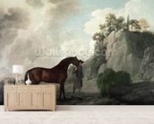 Cato and Groom (oil on canvas) wallpaper mural living room preview