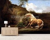 A Horse Frightened by a Lion, c.1790-5 (oil on canvas) wallpaper mural living room preview
