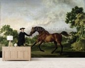 The Duke of Ancasters bay stallion Blank, held by a groom, c.1762-5 wall mural living room preview