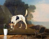 Foxhound on the Scent, c.1760 (oil on paper laid on board) wall mural kitchen preview