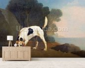 Foxhound on the Scent, c.1760 (oil on paper laid on board) wall mural living room preview