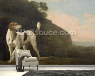 A Foxhound, c.1760 (oil on paper laid on board) wallpaper mural