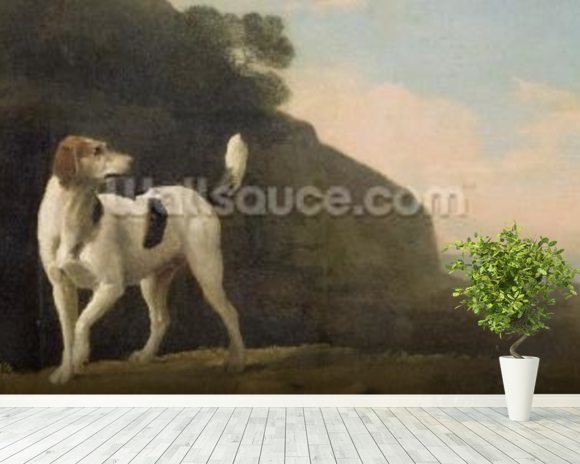 A Foxhound, c.1760 (oil on paper laid on board) wallpaper mural room setting