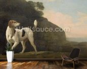 A Foxhound, c.1760 (oil on paper laid on board) wallpaper mural kitchen preview