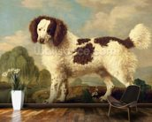 Brown and White Norfolk or Water Spaniel, 1778 (oil on panel) wall mural kitchen preview
