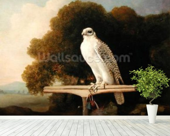 Greenland Falcon (Grey Falcon), 1780 (oil on panel) wall mural room setting
