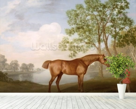 Pumpkin with a Stable-Lad, 1774 (oil on panel) wallpaper mural room setting