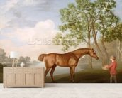 Pumpkin with a Stable-Lad, 1774 (oil on panel) wallpaper mural living room preview