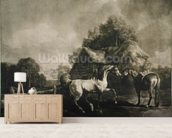 Stallion and Mare, engraved by George Townley Stubbs (1756-1815) 1776 (mezzotint) wall mural living room preview