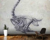 The Skeleton of a Fowl, from the series A Comparative Anatomical Exposition of the Structure of the Human Body with that of a Tiger and a Common Fowl, 1795-1806 (graphite on paper) wall mural kitchen preview