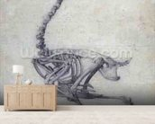 The Skeleton of a Fowl, from the series A Comparative Anatomical Exposition of the Structure of the Human Body with that of a Tiger and a Common Fowl, 1795-1806 (graphite on paper) wall mural living room preview