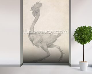 Fowl: Lateral view with Most Feathers Removed, from the series A Comparative Anatomical Exposition of the Structure of the Human Body with that of a Tiger and a Common Fowl (graphite on paper) wallpaper mural