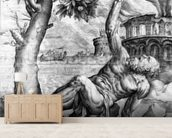 Tantalus, engraved by Giulio Sanuto, c.1550s (engraving) wall mural living room preview