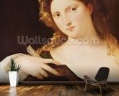 Detail of Allegory of Vanity, or Young Woman with a Mirror, c.1515 (oil on canvas) wallpaper mural kitchen preview