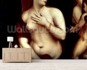 Venus in Front of the Mirror wall mural living room preview